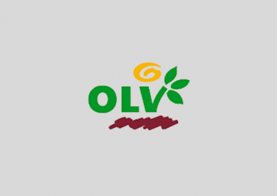 OLV Verlag